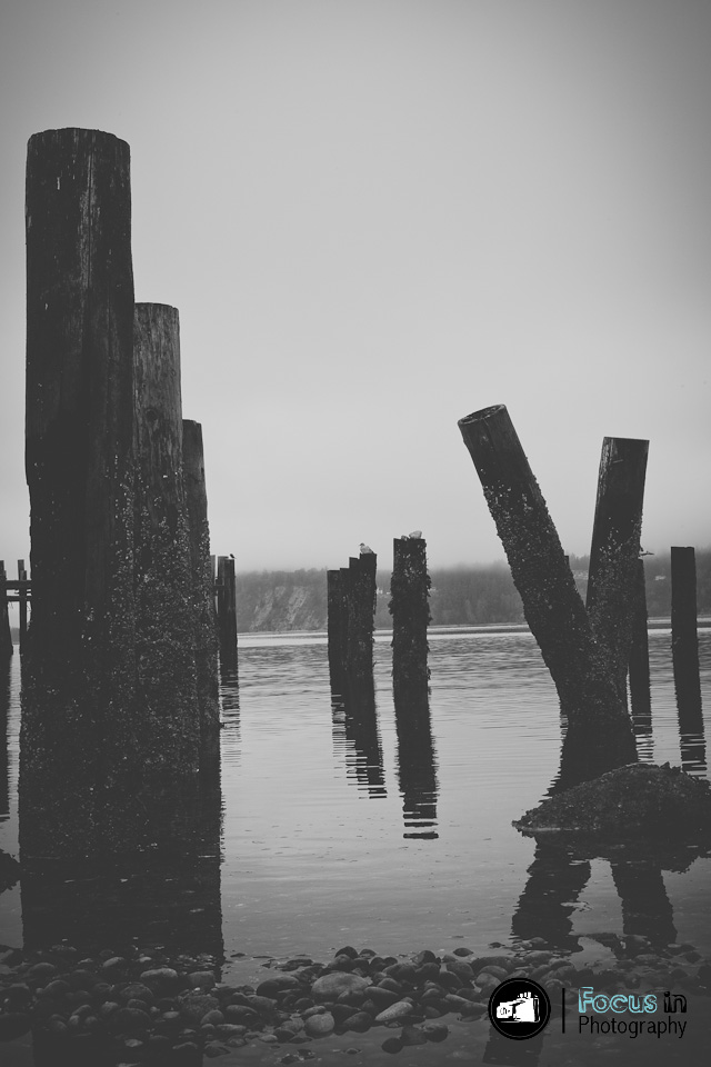 Tacoma (5 of 17)