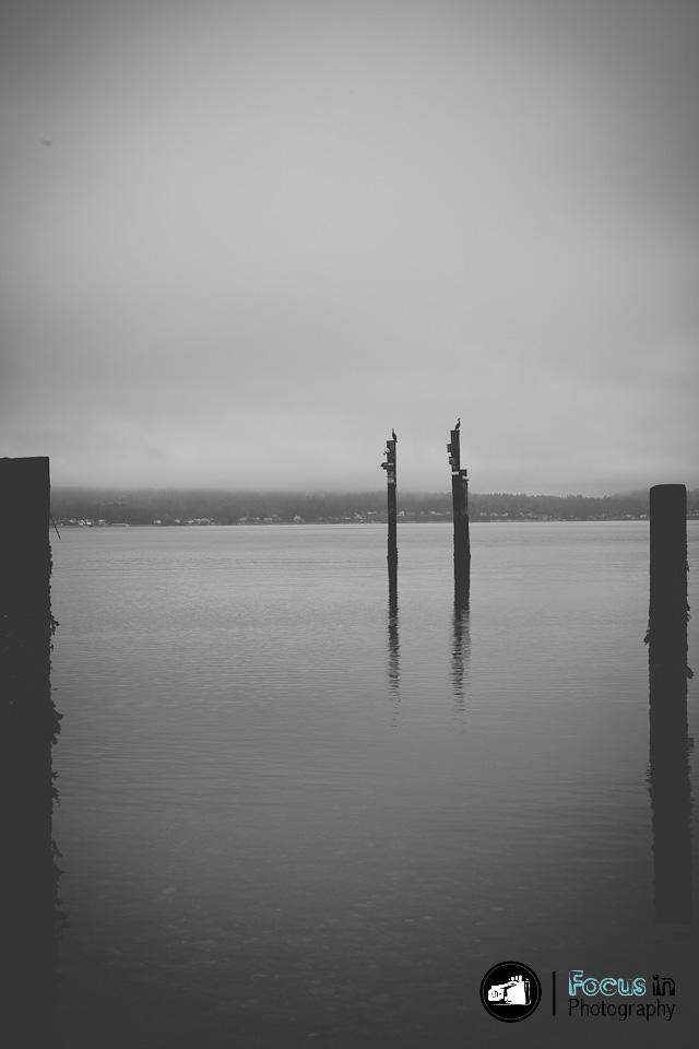 Tacoma (7 of 17)