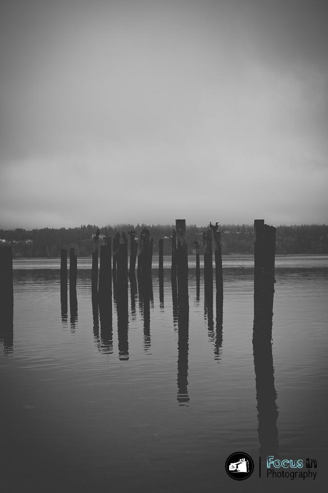 Tacoma (9 of 17)