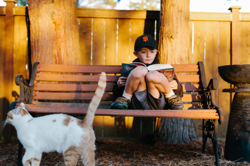 A Boy, a Book and a Cat – Tacoma Family Photography