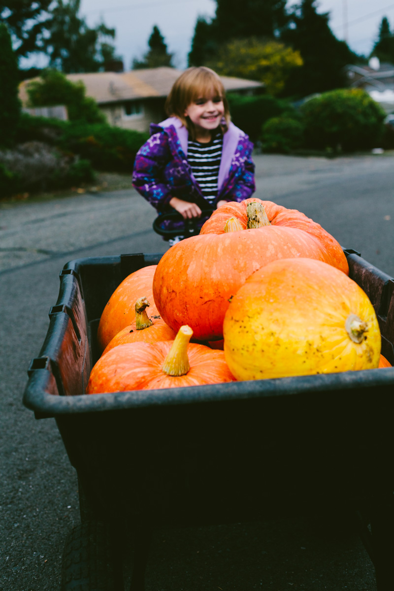 pumpkinharvest2016-14-of-25